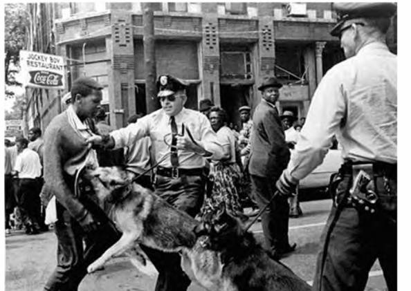 The Dogs of War unleashed upon the black male